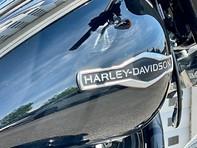 Harley-Davidson Softail SOFTAIL SPORT GLIDE 18 5