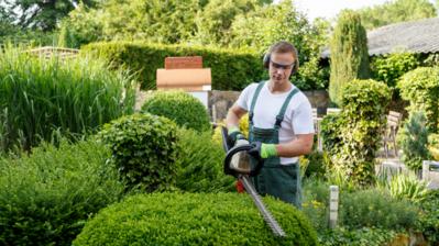 Top 5 Best Vans for Gardeners