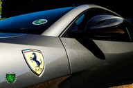 Ferrari GTC4 Lusso 6.3 V12 Auto (FULL BODY PPF) 67
