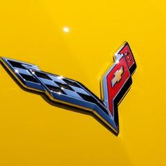 Chevrolet Corvette C7 STINGRAY GTLM HOMAGE 6.2 MANUAL 1