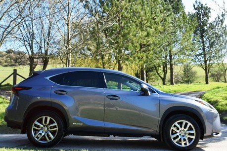 Lexus NX 300H Luxury Cvt Technical Data
