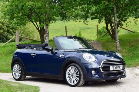 Mini Convertible Convertible (Full Leather)