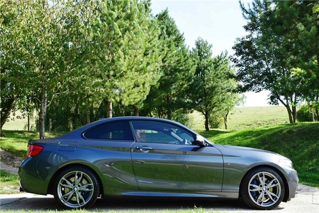 BMW 2 Series Auto (5,038 Miles from new) Technical Data