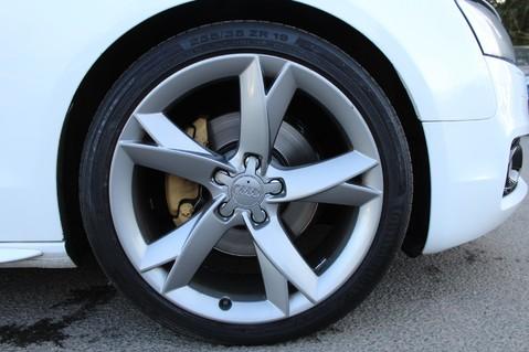 Audi A5 TDI QUATTRO S LINE SPECIAL EDITION S-TRONIC - SAT NAV-DAB RADIO-B+O- FSH 52