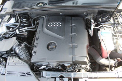 Audi A4 TFSI BLACK EDITION AUTO - HEATED LEATHER/DAB/BANG+OLUFSEN/XENONS - F/A/S/H 53